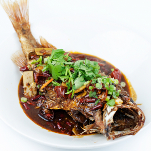 66. Braised Grouper Brisket with Ginger and Green Onions