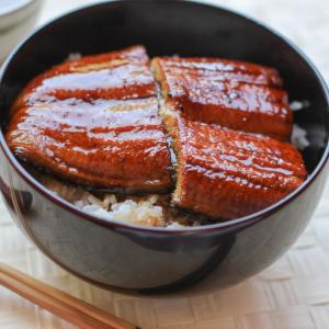 18. Ungagi Don Grilled Eel Rice