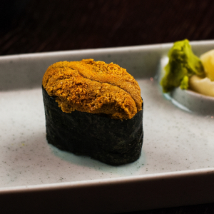 C16 Sea Urchin - Uni