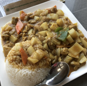 3. Japanese Style Curry Chicken on Rice