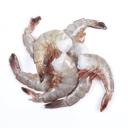 Shrimp Shell on Headless