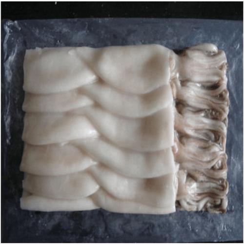 Squid 5/8