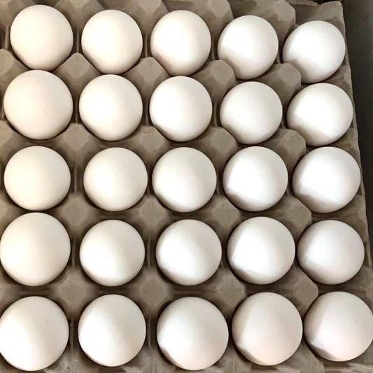 Chicken Egg (30 pcs) 农场鸡蛋一排 (30个)