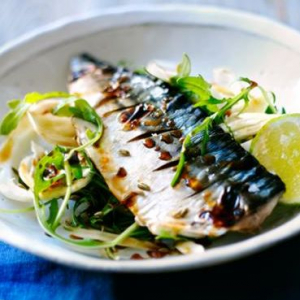 A27 B.B.Q. Mackerel